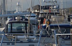 Southampton Luxury Motor Yacht Charters